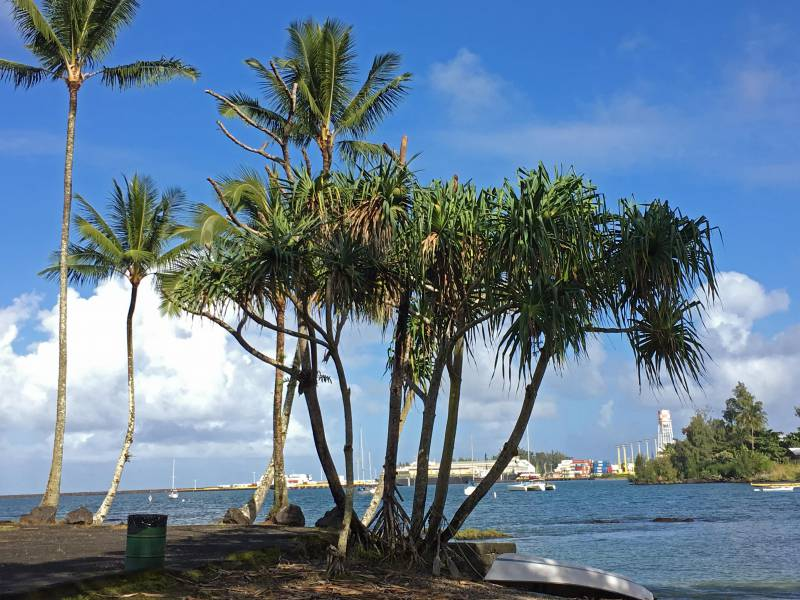 Hilo Bay, Big Island